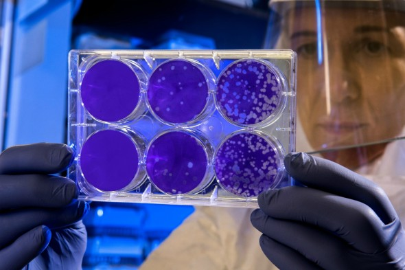 Activating certain cell types to fight serious illnesses